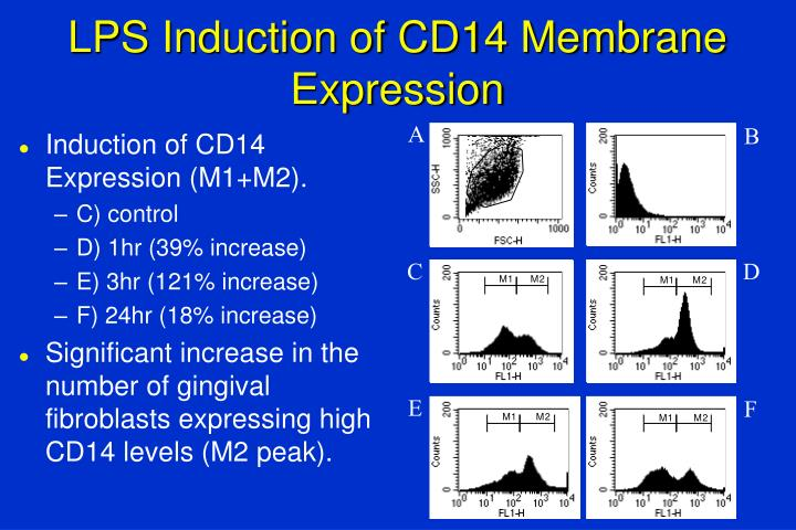 LPS Induction of CD14 Membrane Expression