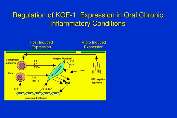 Regulation of KGF-1  Expression in Oral Chronic Inflammatory Conditions