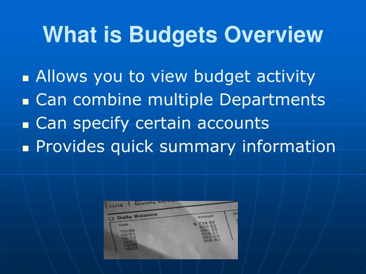 What is Budgets Overview
