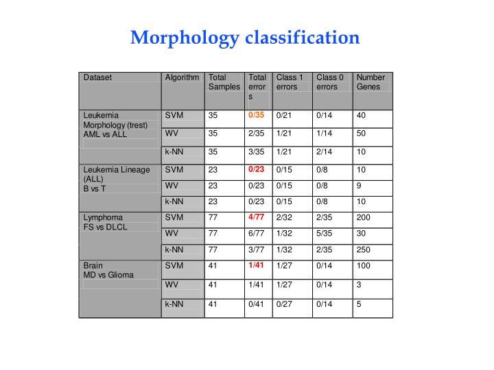 Morphology classification