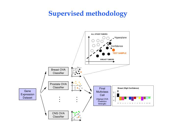 Supervised methodology