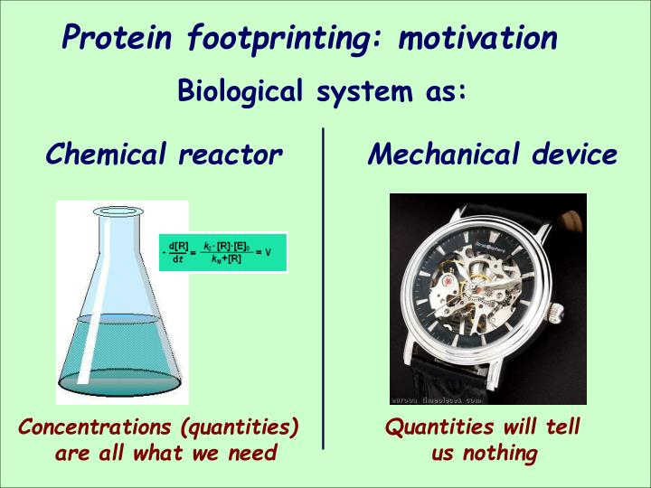 Protein footprinting: motivation
