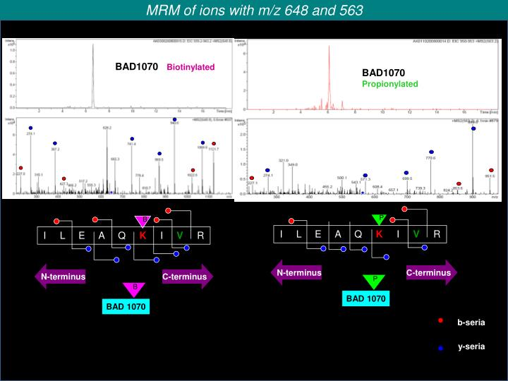 MRM of ions with m/z 648 and 563