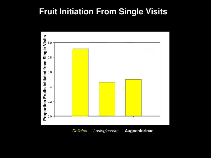 Fruit Initiation From Single Visits