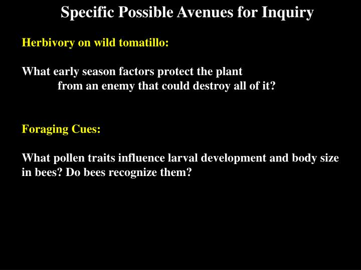 Specific Possible Avenues for Inquiry