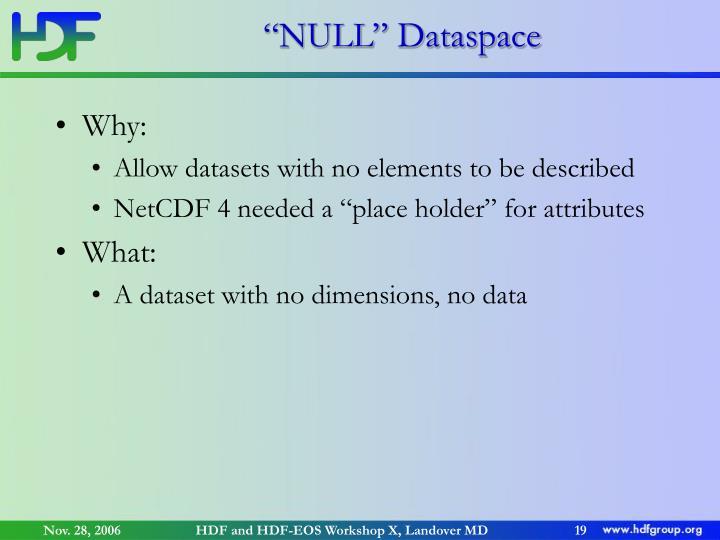 """NULL"" Dataspace"