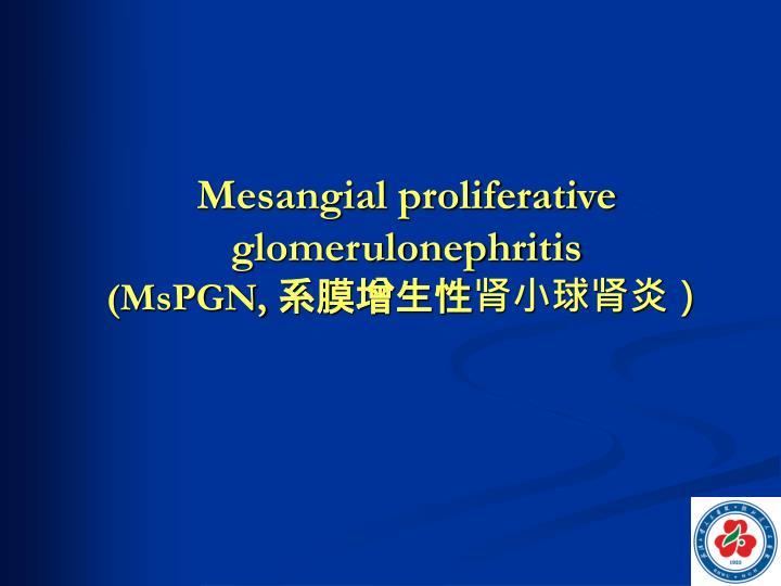Mesangial proliferative glomerulonephritis