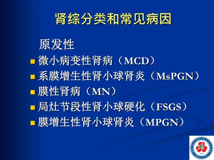 肾综分类和常见病因