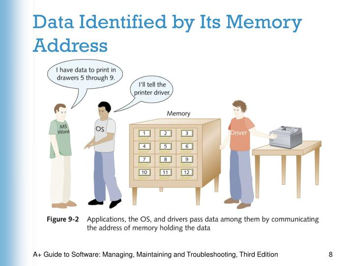 Data Identified by Its Memory Address