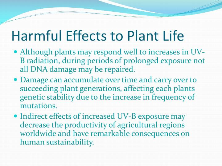 Harmful Effects to Plant Life