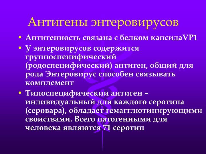 Антигены энтеровирусов