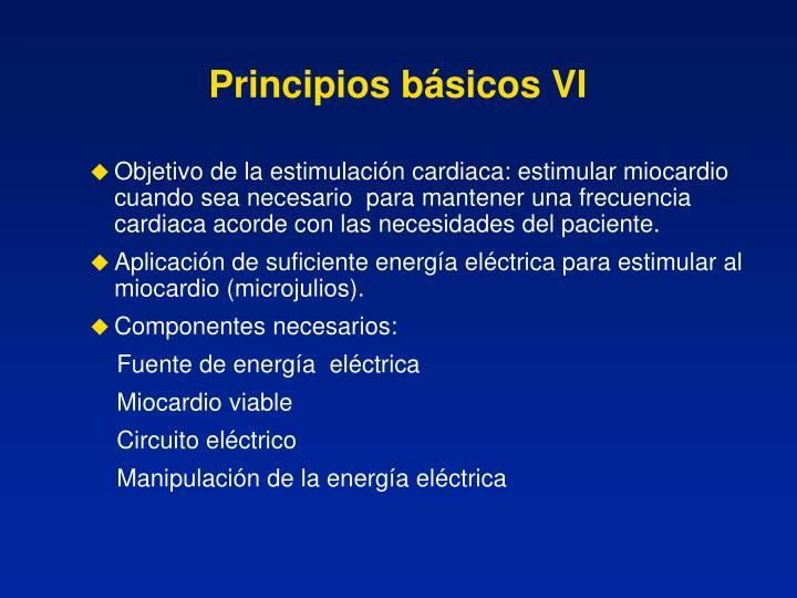 Principios básicos VI