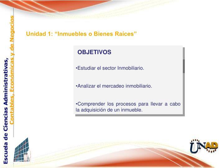 """Unidad 1: """"Inmuebles o Bienes Raíces"""""""