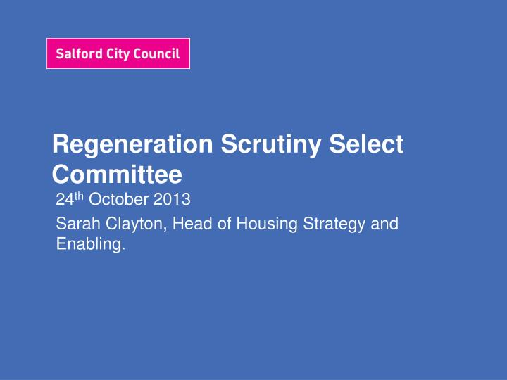 Regeneration scrutiny select committee