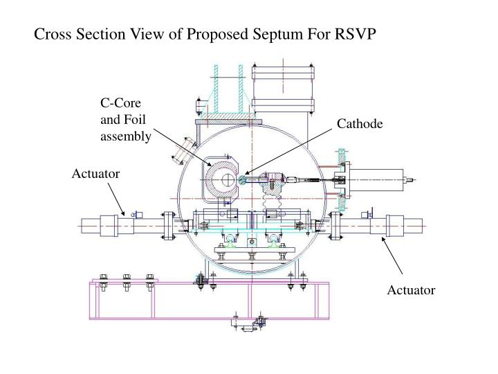 Cross Section View of Proposed Septum For RSVP