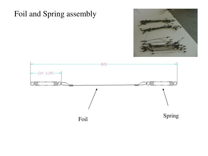 Foil and Spring assembly