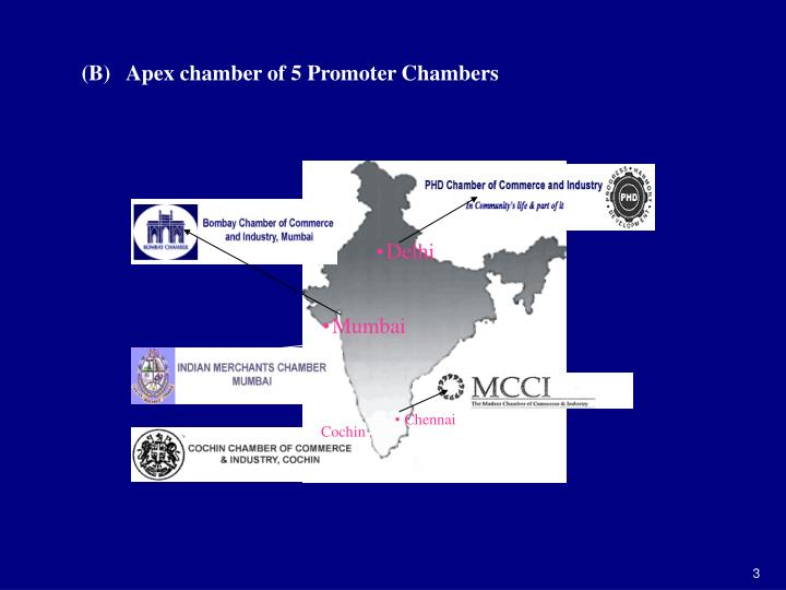 (B)   Apex chamber of 5 Promoter Chambers