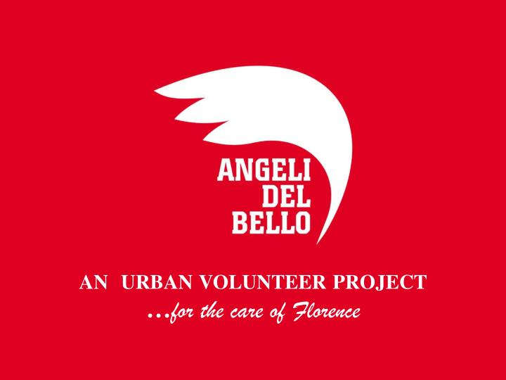 An  urban volunteer project