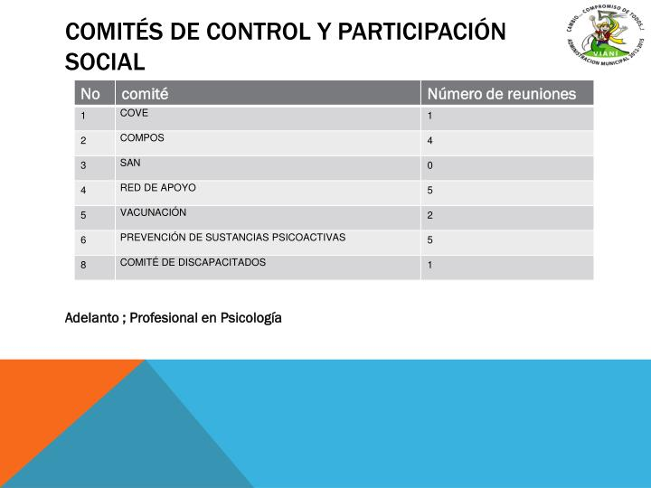 Comités de control y participación social