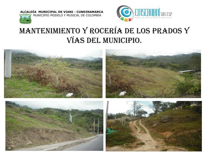 Mantenimiento y rocería de los prados y vías del municipio.