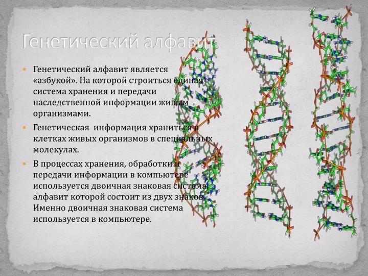Генетический алфавит.