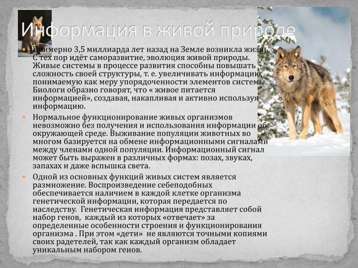 Информация в живой природе