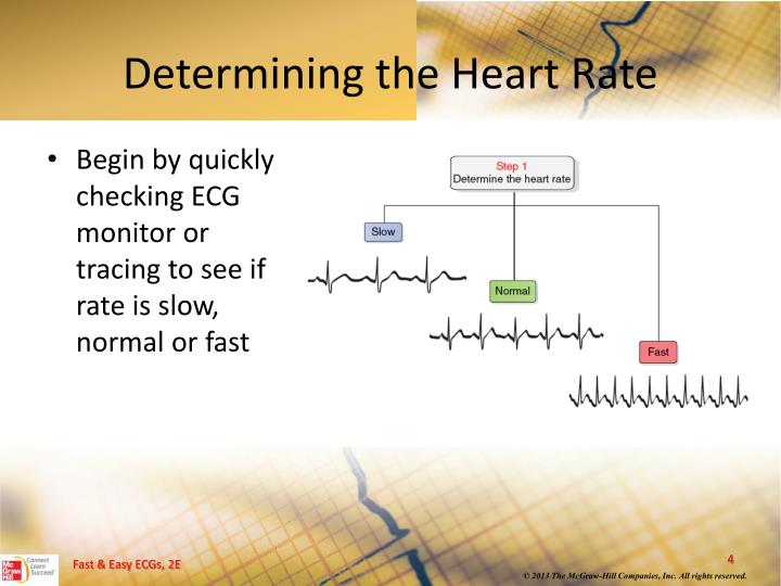 Determining the Heart Rate