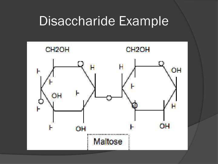 Disaccharide Example