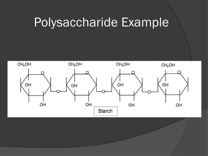 Polysaccharide Example