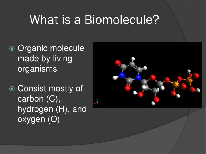 What is a Biomolecule?
