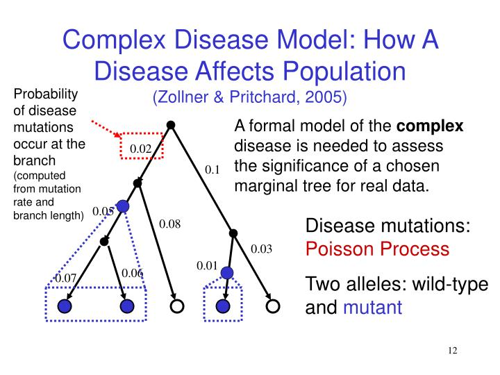 Probability of disease mutations occur at the branch