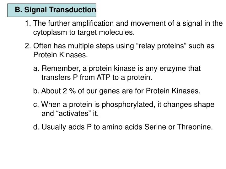 B. Signal Transduction