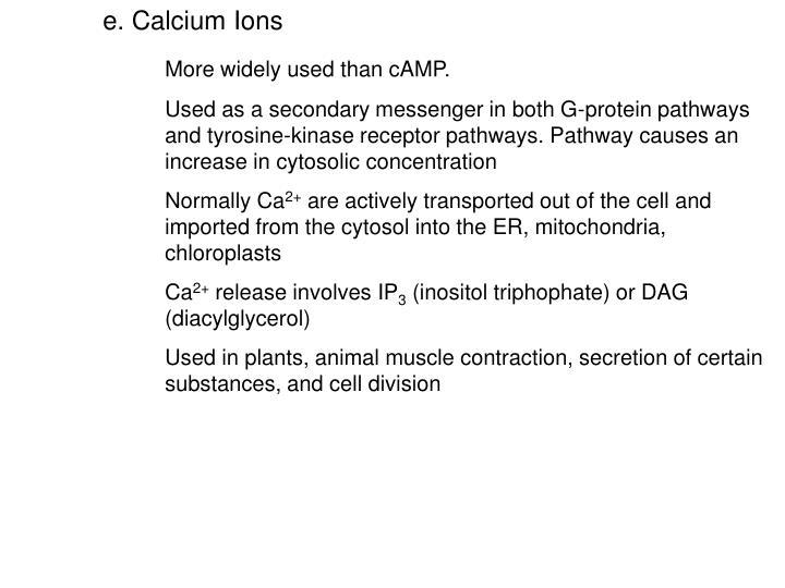 e. Calcium Ions