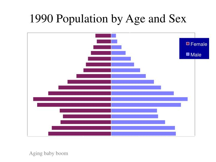 1990 Population by Age and Sex
