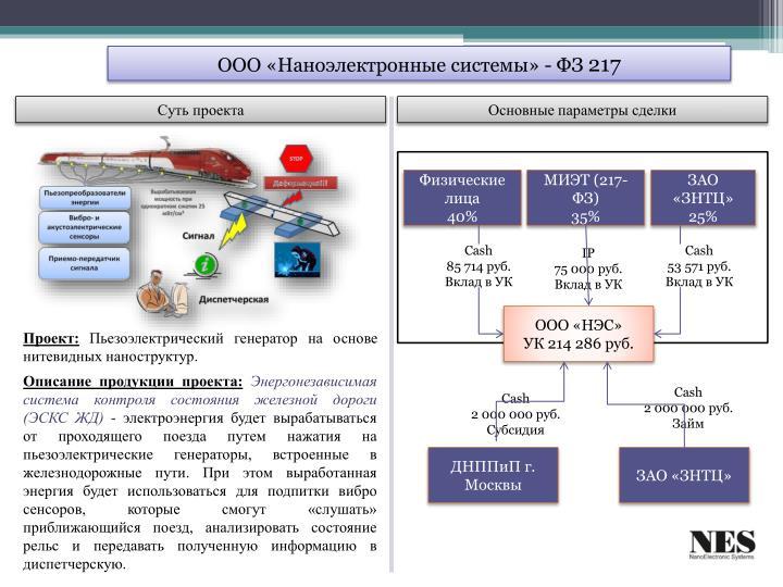ООО «Наноэлектронные системы» - ФЗ
