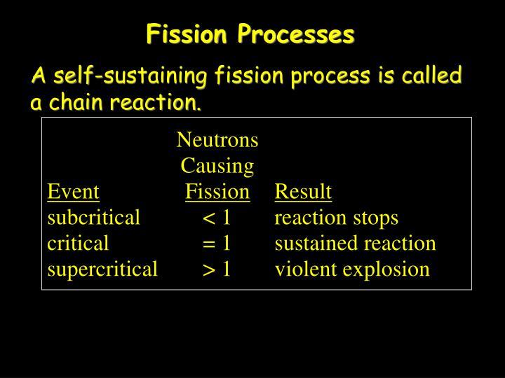 Fission Processes