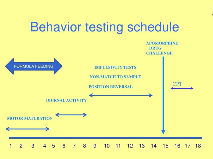 Behavior testing schedule