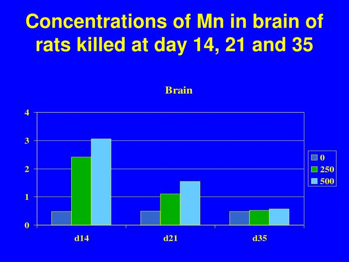 Concentrations of Mn in brain of rats killed at day 14, 21 and 35