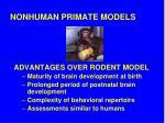 nonhuman primate models