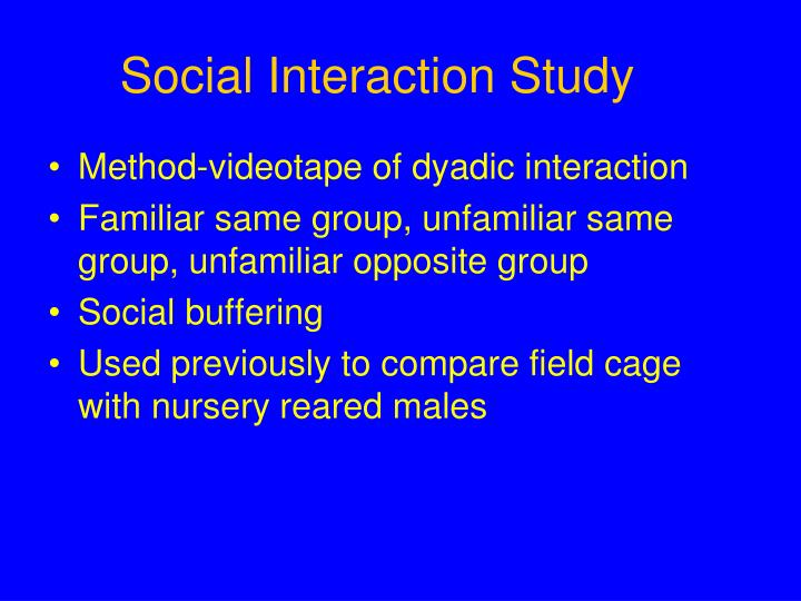Social Interaction Study