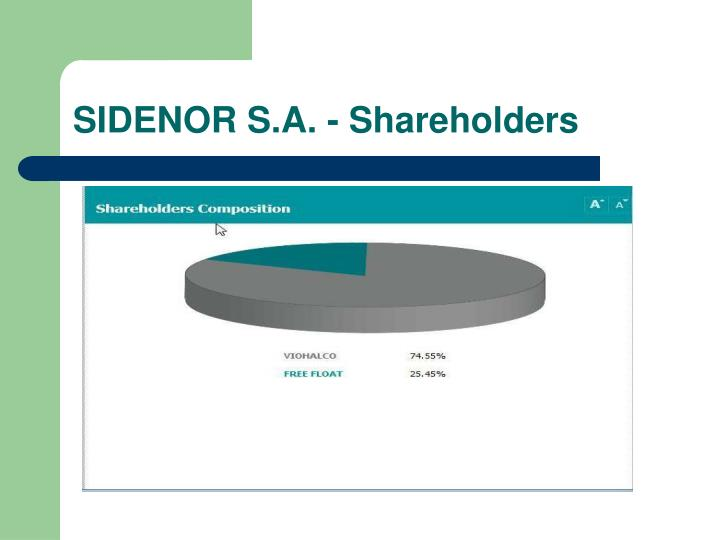 SIDENOR S.A. - Shareholders