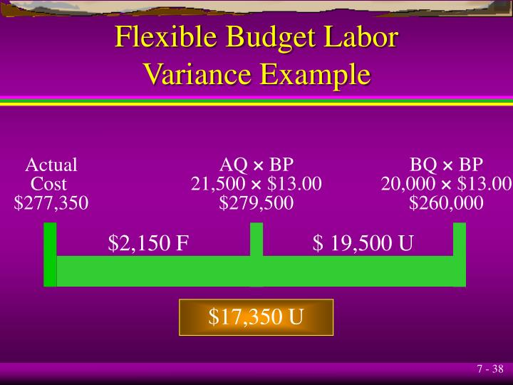 Flexible Budget Labor