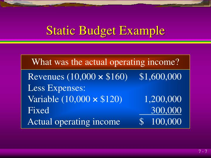 Static Budget Example