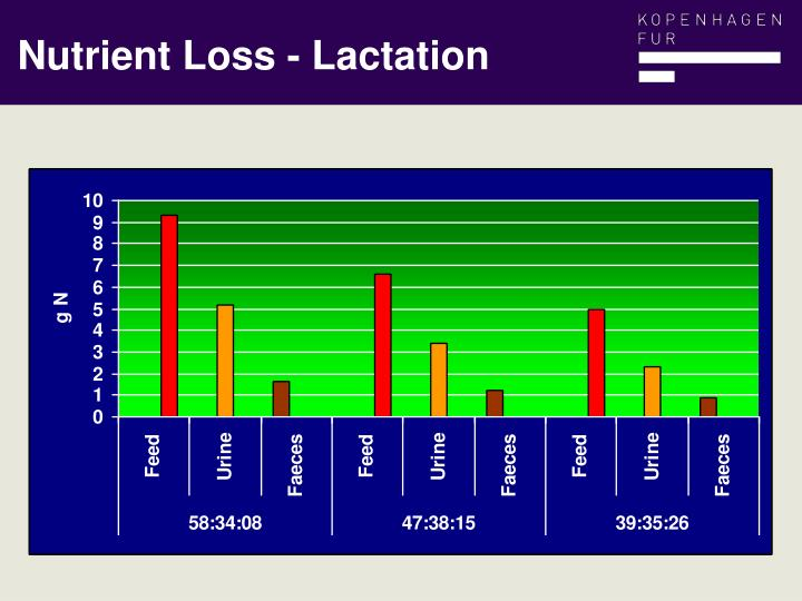 Nutrient Loss - Lactation