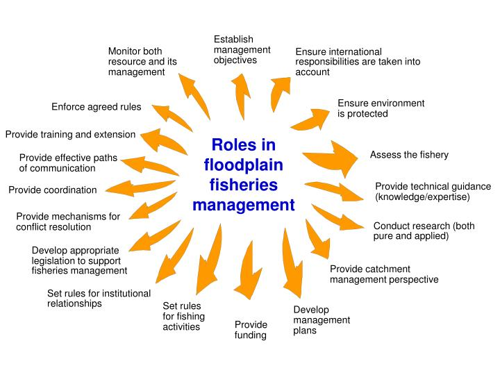 Roles in floodplain fisheries management