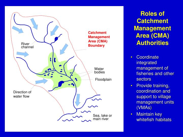 Roles of Catchment Management Area (CMA) Authorities