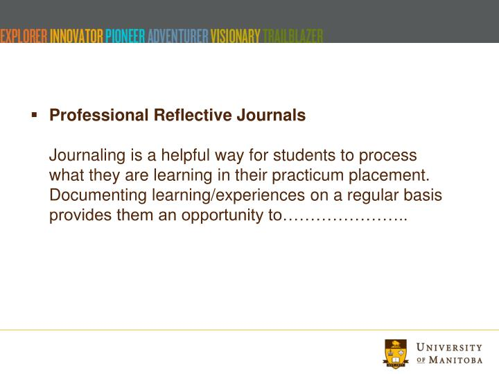 Professional Reflective Journals