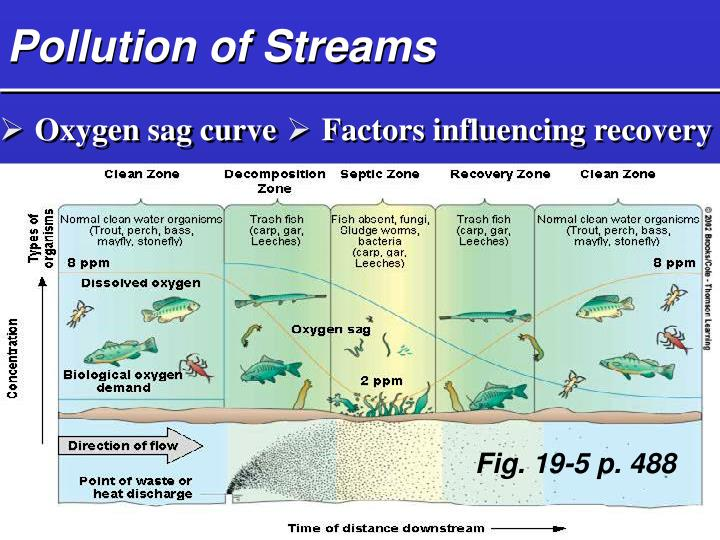 Pollution of Streams