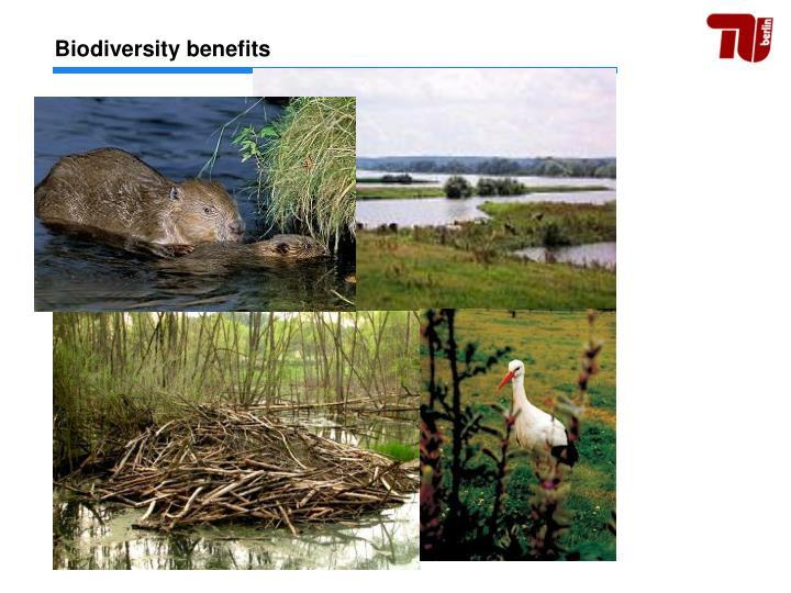 Biodiversity benefits