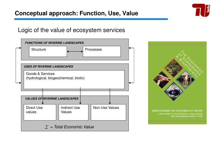 Conceptual approach: Function, Use, Value